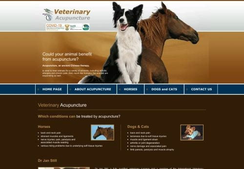 Animal Acupuncture in South Africa