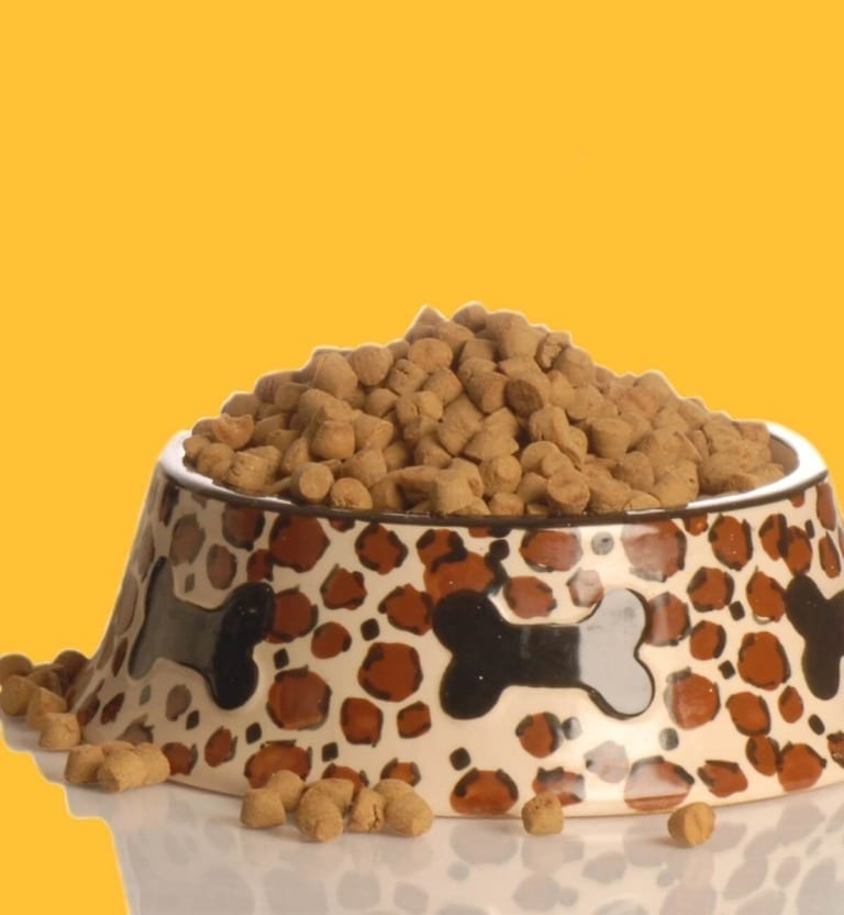 Biologically species Appropriate Raw and Real Food for Cats and Dogs